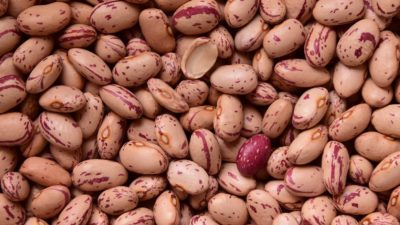 Protein beans