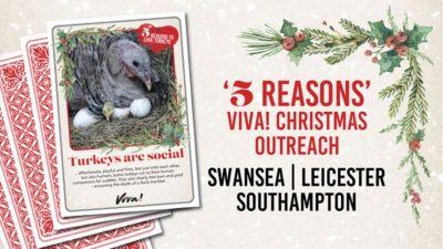 5 Reasons Viva! Christmas Outreach