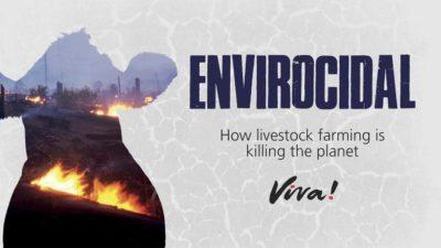 Envirocidal Viva!