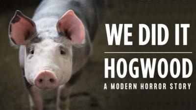Crowdfunding Hogwood