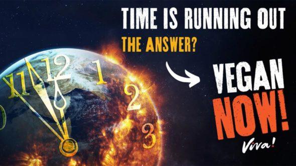 Vegan Now Viva!