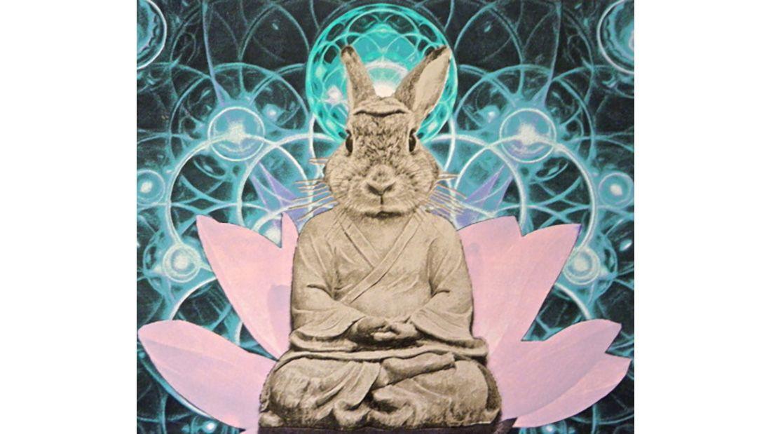 Fiorito Buddha Bunny