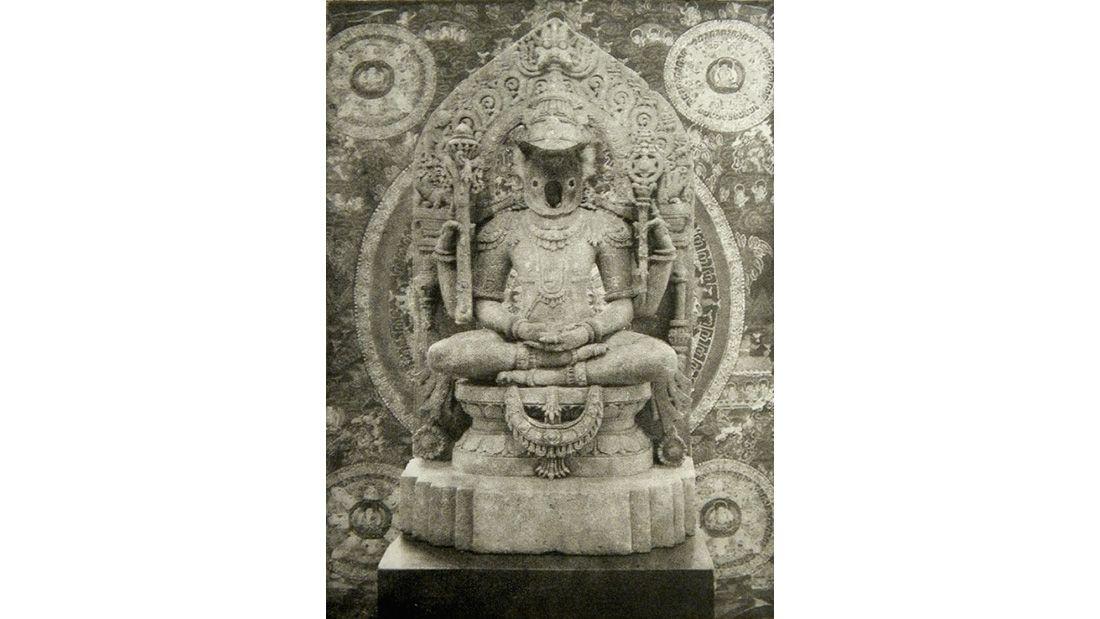 Fiorito Koala Buddha Gravure
