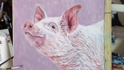 Jodie Hughes Pig