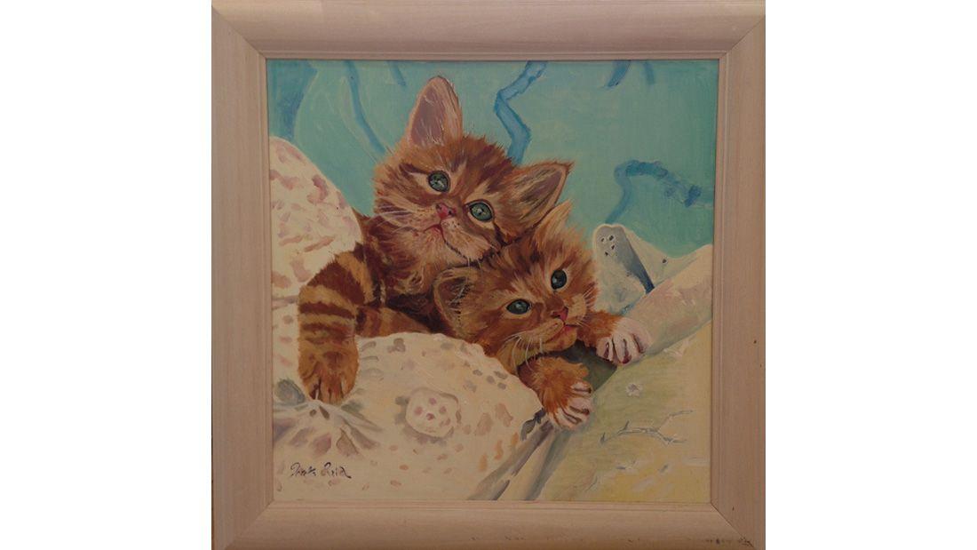 Loretta Reid Quarrell kittens in Cotton