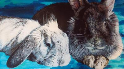 Naomi Joy rabbits