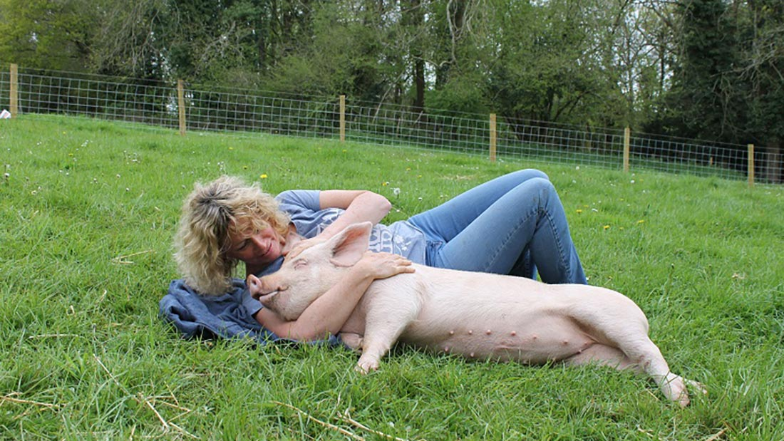Juliet and pig picture