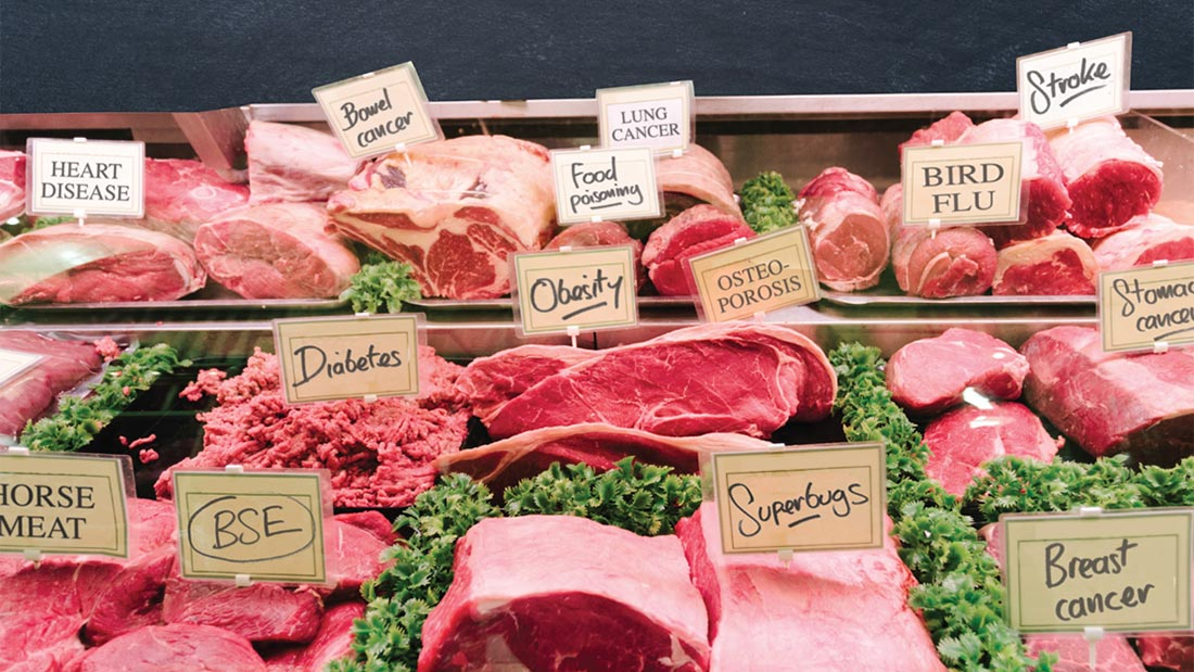 Why meat and dairy harm