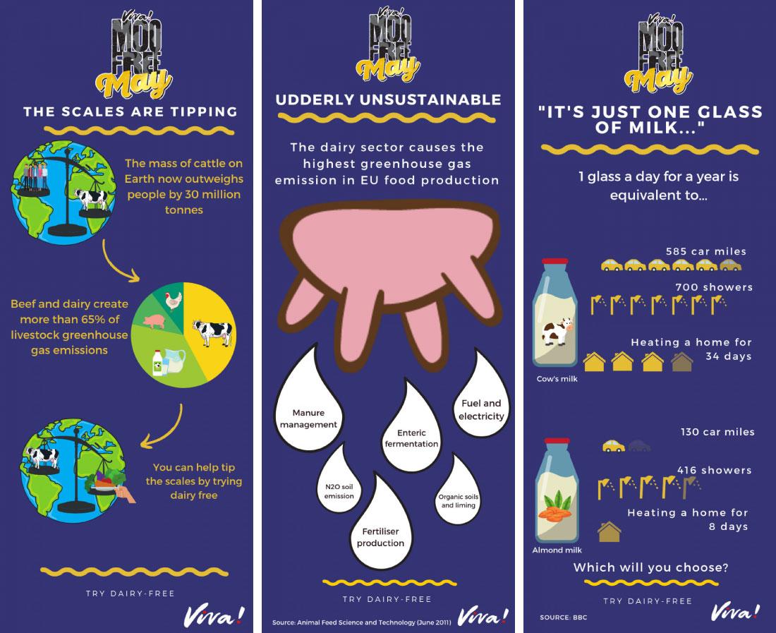 MFM infographics