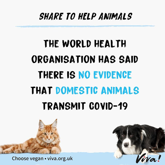 Share to help animals banner