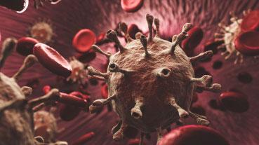 What are the coronavirus