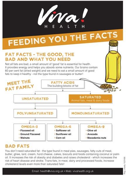 Mini fact sheet: Fat facts