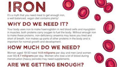 Mini fact sheet: Iron
