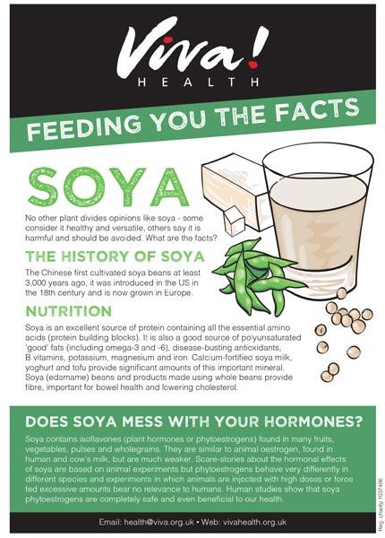 Mini fact sheet Soya