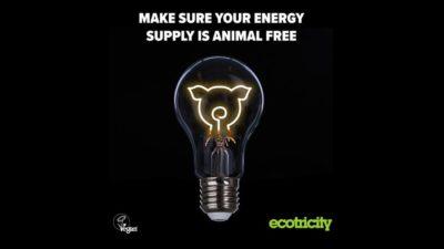 Ecotricity Vegan Energy