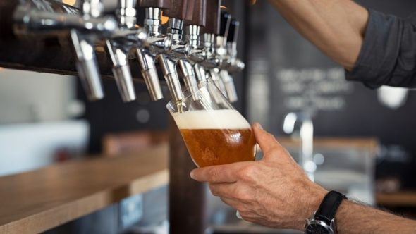 barman pouring a pint of beer