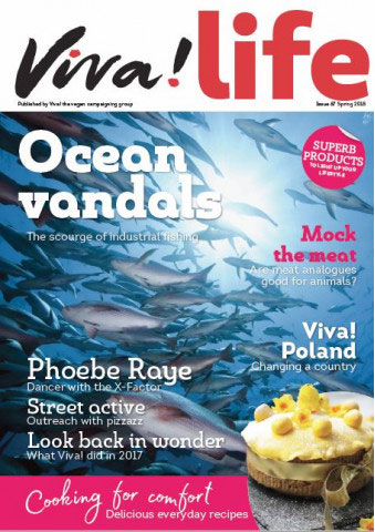 VL67 cover