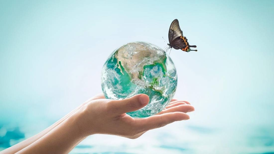 biodiversity hand holding earth with butterfly on it