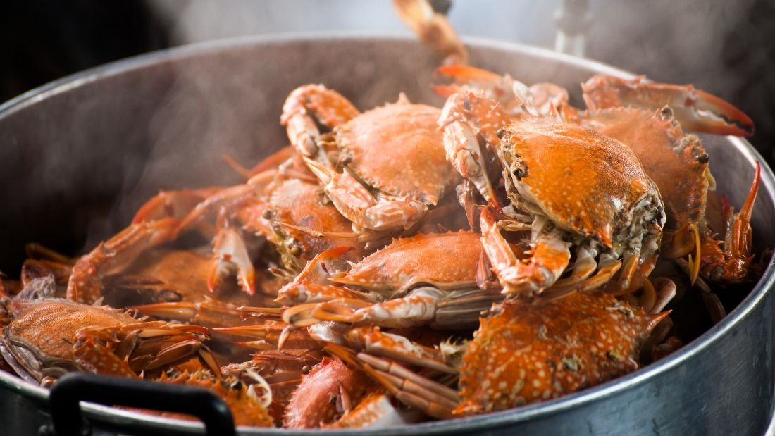 Crabs steamed