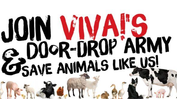 Join Viva!'s door-drop army. Save animals like us!