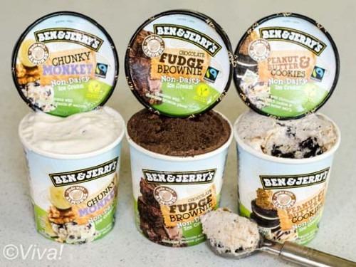 ben and jerry vegan ice cream
