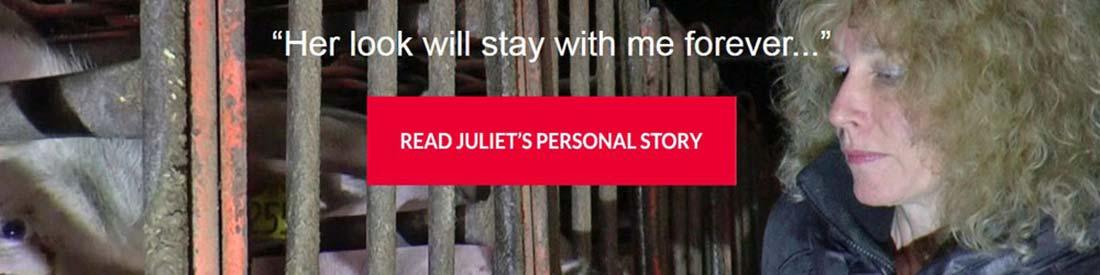 Juliet - Face off pigs