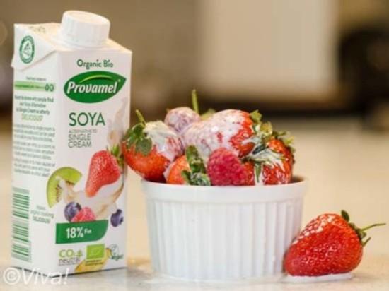 Provamel Single Cream