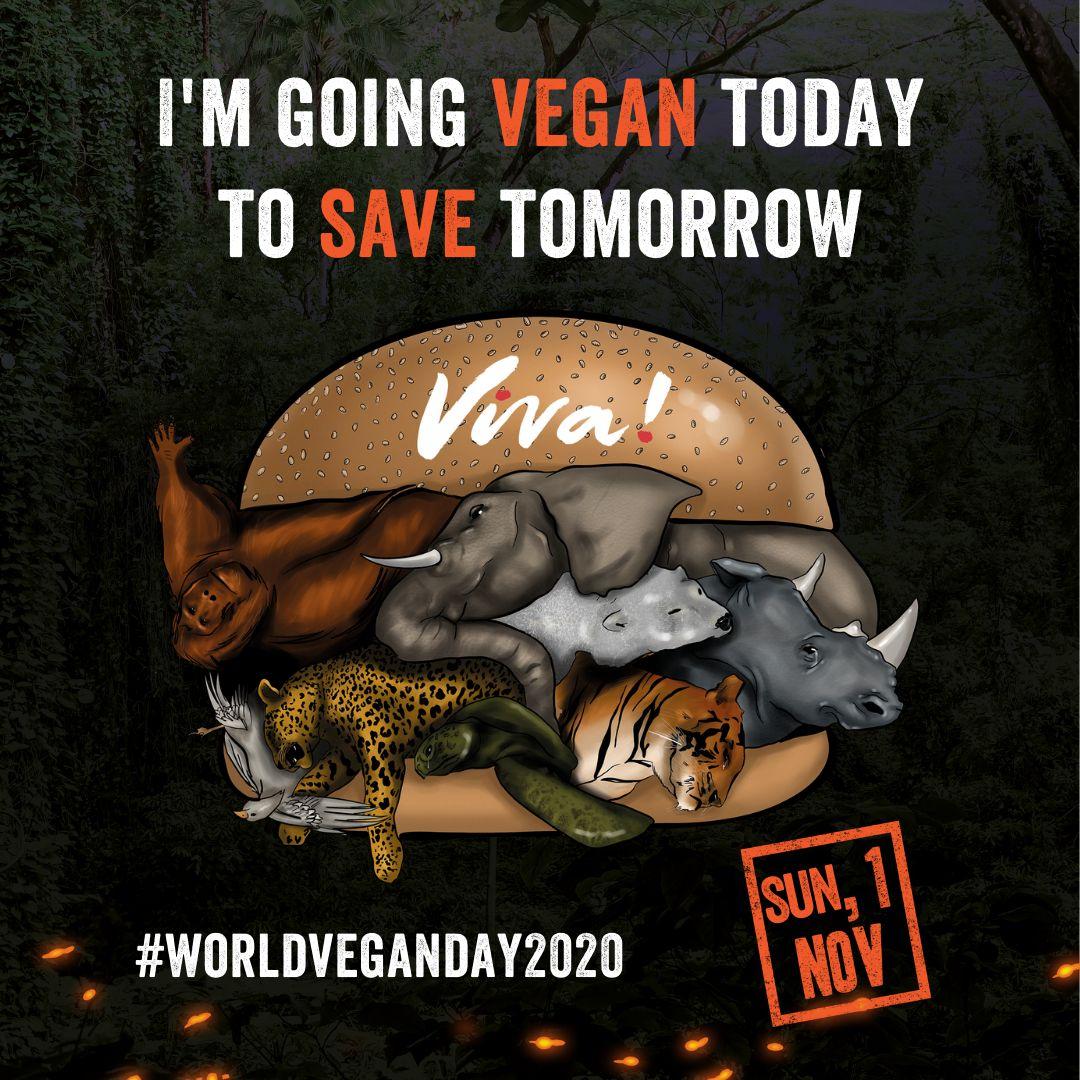world vegan day graphic