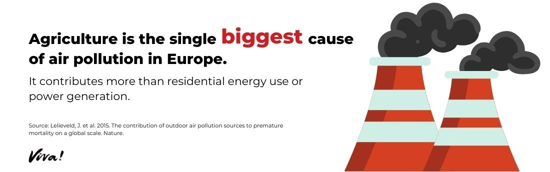 air pollution graphic