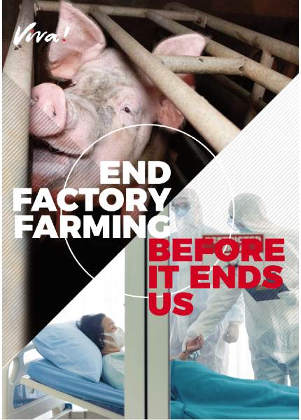 Front cover of end factory farming leaflet