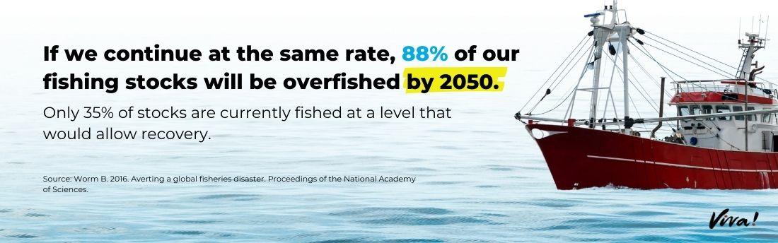 fishing stocks graphic