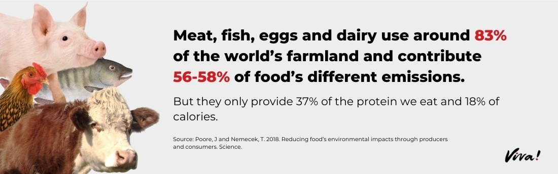 world's farmland use