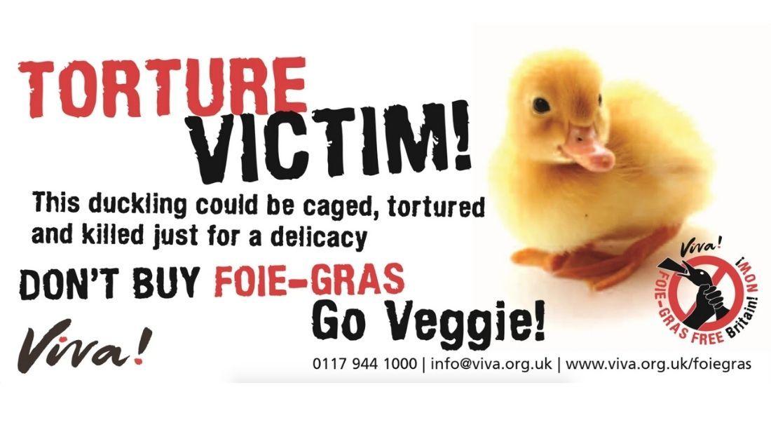 foie gras leaflets