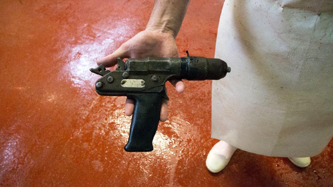 Captive Bolt Gun