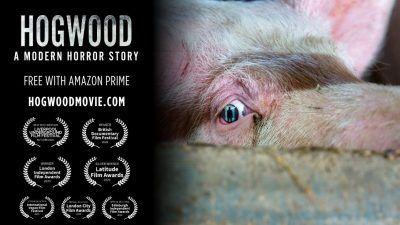 Hogwood documentary poster