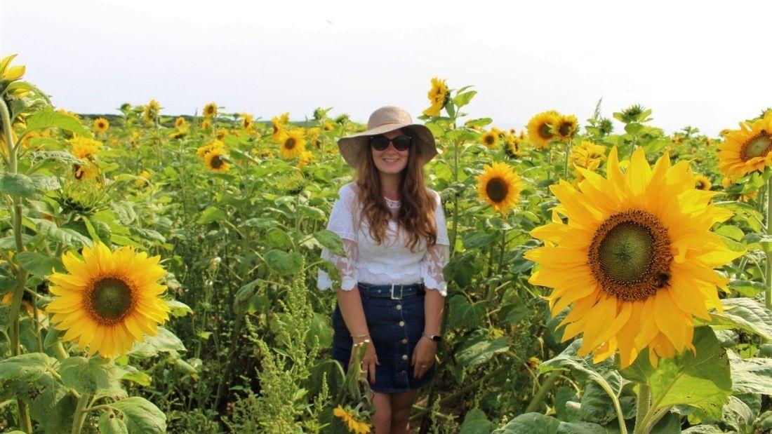 Reneta in a sunflower field