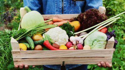 box of organic produce
