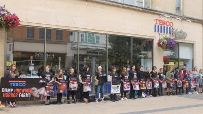 Viva! activists standing outside tesco with placards protesting against hogwood farm in 2018