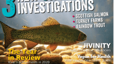 viva! life magazine 76 spring issue cover