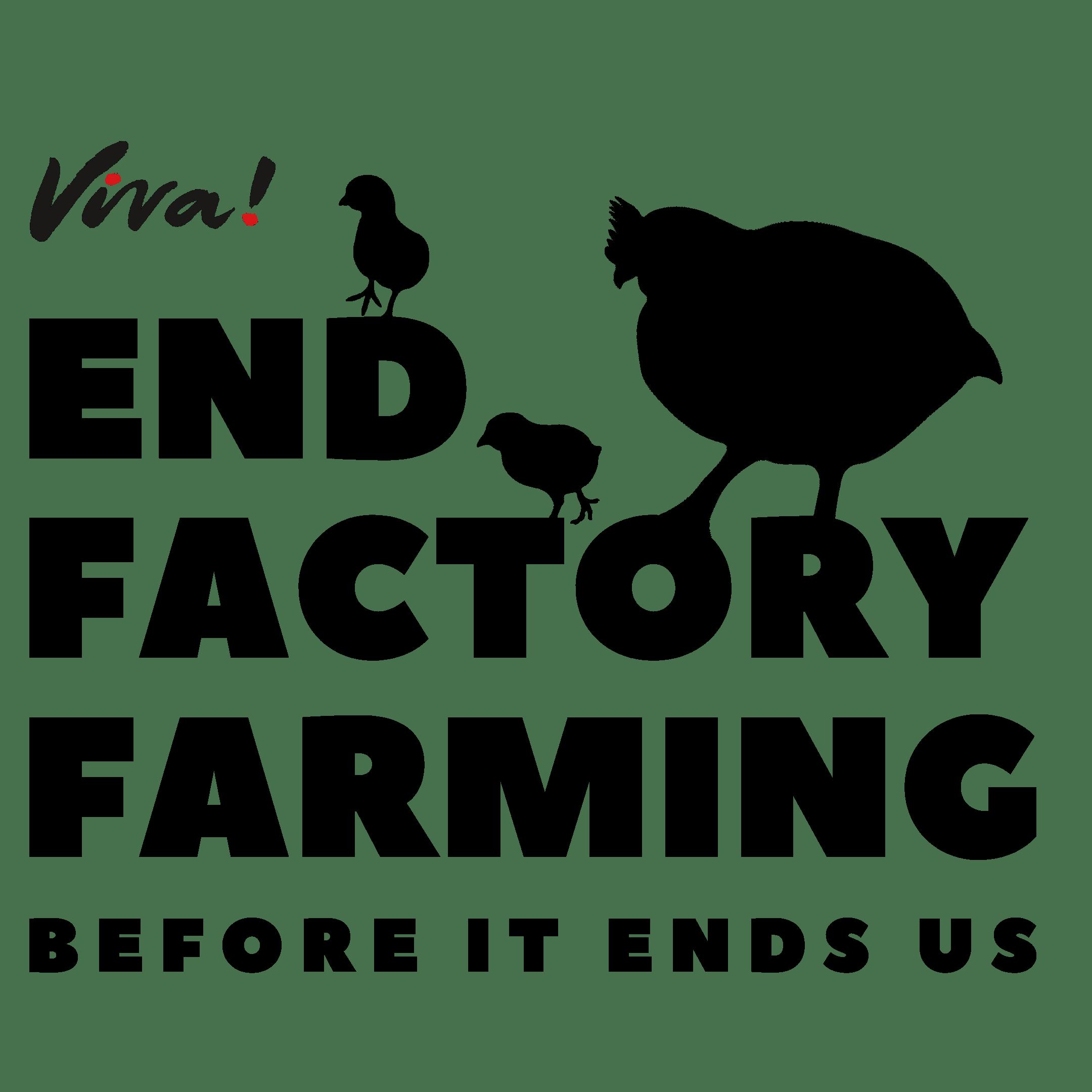 End factory farming broiler logo