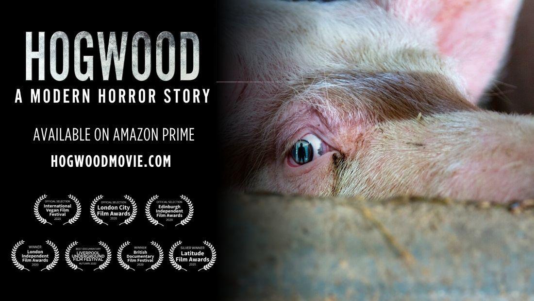 hogwood a modern horror story