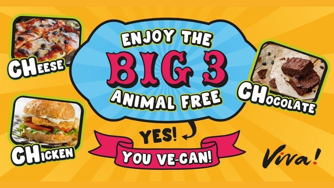 Big 3
