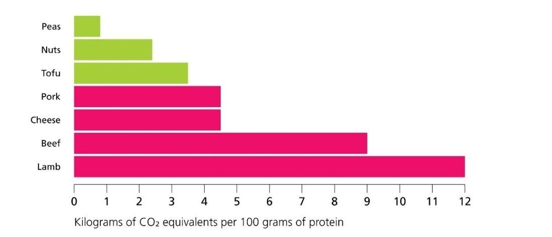 Comparing-the-highest-emitting-plant-foods-with-the-lowest-emitting-animal-foods
