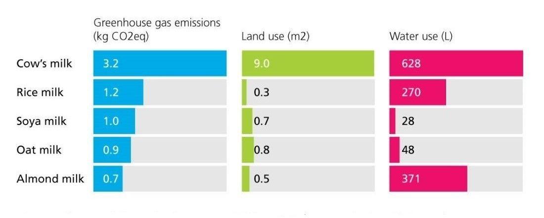 Cows milk has a higher environmental impact than plant based milks