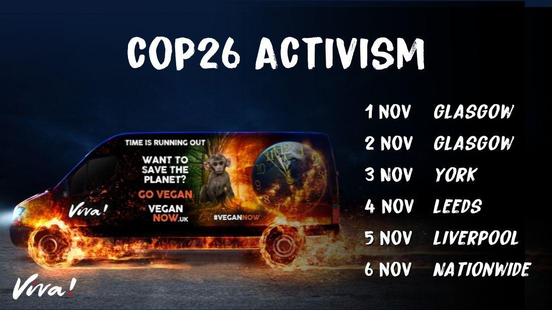 COP26 activism banner